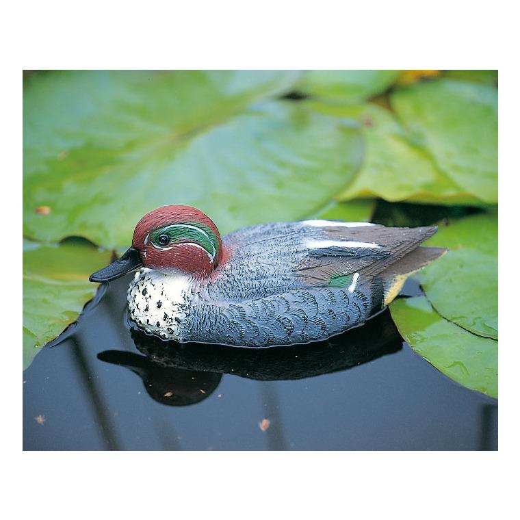 Sarcelle mâle multicolore 29 cm BOTANIC Prix 8.50 €
