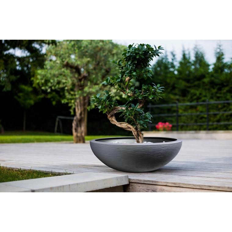 Vasque Graphit Anthracite – D59 x H21 BOTANIC Prix 29.95 €